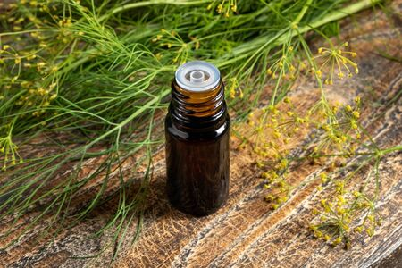 A dark bottle of dill seed oil with fresh blooming Anethum graveolens twigs