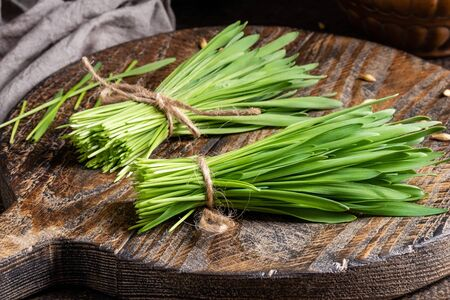 Fresh barley grass on a wooden table