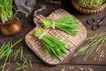 Two bundles of fresh barley grass on a table