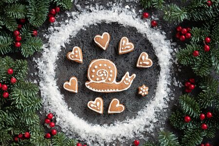 Homemade Christmas gingerbread cookie in the form of a snail wih fir branches and holly berries Banco de Imagens