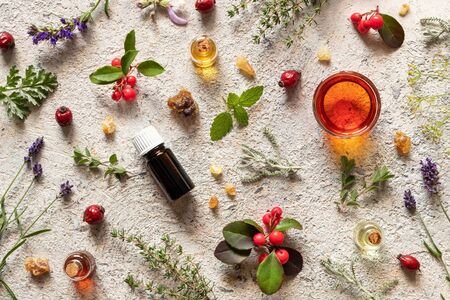 Bottles of essential oil with frankincense, lavender, dried rose hips, wintergreen and other herbs Stock Photo