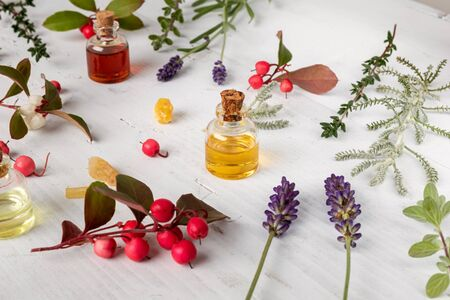 Bottles of essential oil with frankincense, wintergreen, lavender, thyme and other herbs on a white background