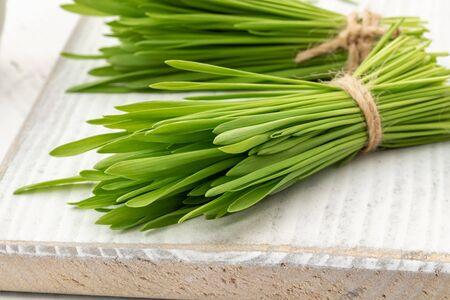 Fresh barley grass on a white wooden table Фото со стока