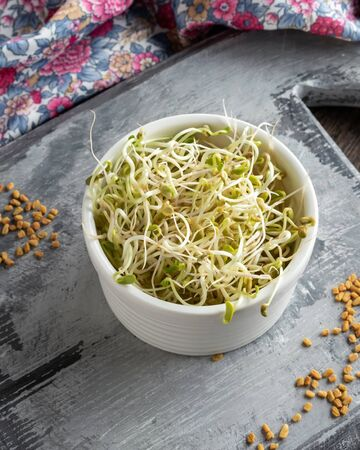 Freshly grown fenugreek sprouts with dry seeds in the background
