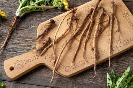 Fresh dandelion roots on a table Imagens