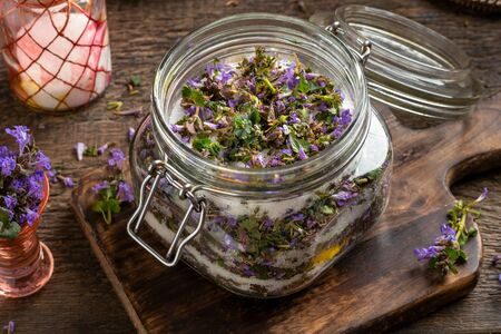 A jar filled with cut-up fresh ground-ivy plant and sugar, to prepare homemade herbal syrup against cough