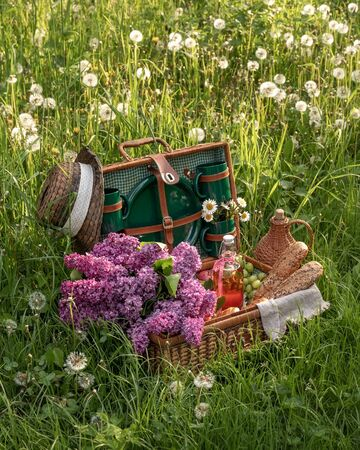Picnic basket outdoors in green grass with dandelion clocks