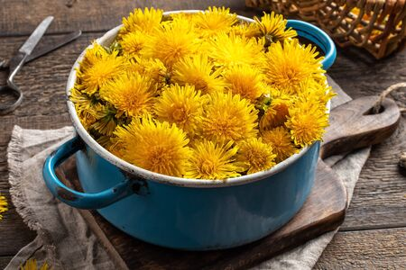 Fresh dandelion flowers in a blue pot on a table