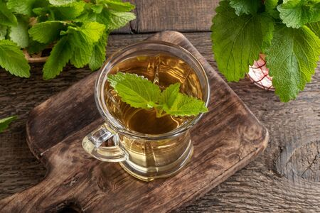 A cup of herbal tea with fresh melissa plant Imagens