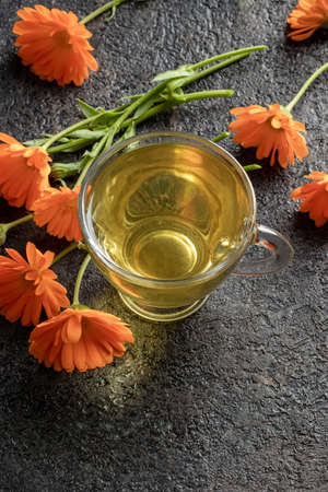 A cup of calendula tea with fresh flowers Reklamní fotografie