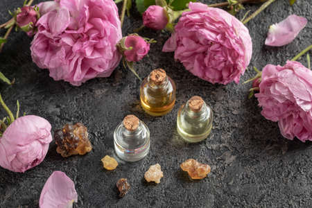 Three bottles of essential oil with frankincense resin and cabbage rose flowers on a dark gray background