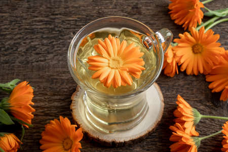 A cup of herbal tea with fresh calendula flowers