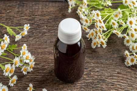 A bottle of tincture with fresh blooming feverfew plant