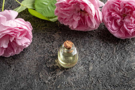 A bottle of essential oil with fresh roses on a dark background