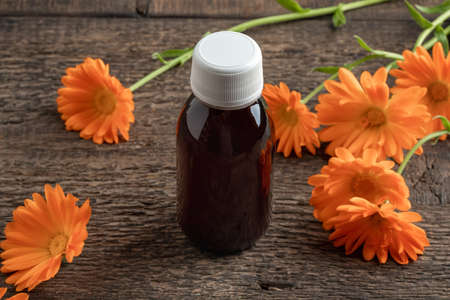A bottle of calendula tincture with fresh flowers Reklamní fotografie
