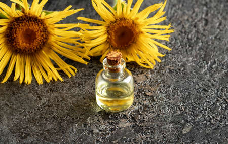 A bottle of Inula helenium essential oil on a dark background