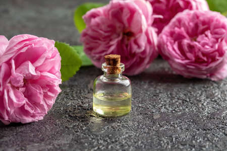 A bottle of essential oil with fresh rose de mai flowers Standard-Bild