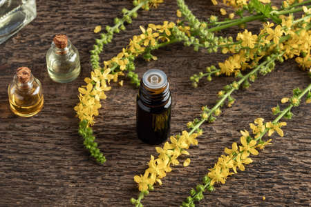 A bottle of essential oil with fresh blooming agrimony