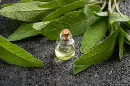 A bottle of essential oil with fresh sage twigs on a table