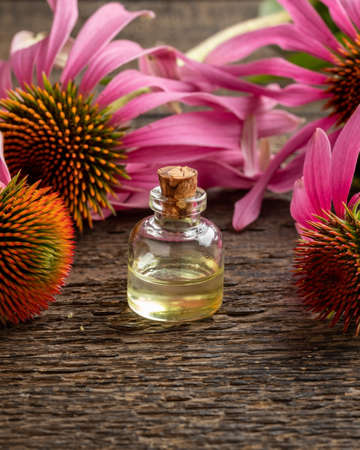 Essential oil bottle with fresh echinacea flowers