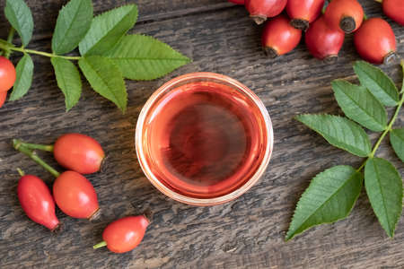 A bowl of rosehip seed oil with fresh plant, top view