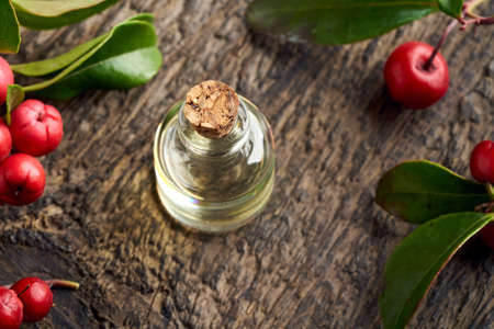 Essential oil bottle with wintergreen leaves and berries on a table Reklamní fotografie