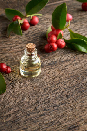 A bottle of essential oil with wintergreen leaves and berries on a wooden background with copy space at the bottom
