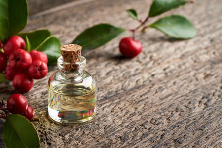 A bottle of essential oil with wintergreen leaves and berries, with copy space