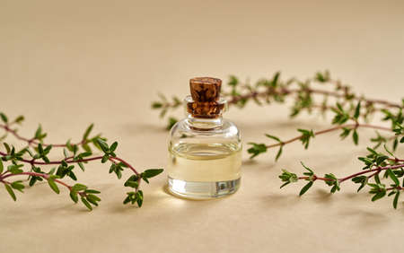 Essential oil bottle with fresh thyme on pastel yellow background, close up