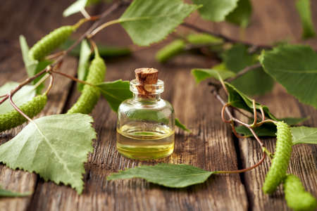 A bottle of essential oil with birch branches and catkins