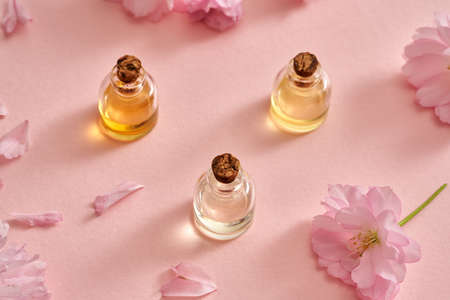 Spring concept with bottles of essential oil and kwanzan cherry blossoms on a pastel pink background Standard-Bild
