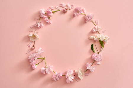 Circle shape made from pink kwanzan cherry blossoms in spring on pastel pink background, with copy space