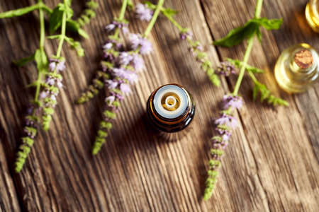 A dark bottle of aromatherapy essential oil with peppermint flowers. Herbal medicine.