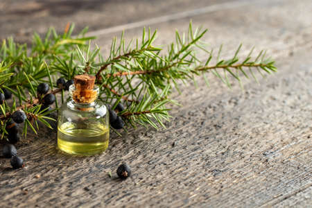 A bottle of essential oil with juniper twigs and berries, with copy space