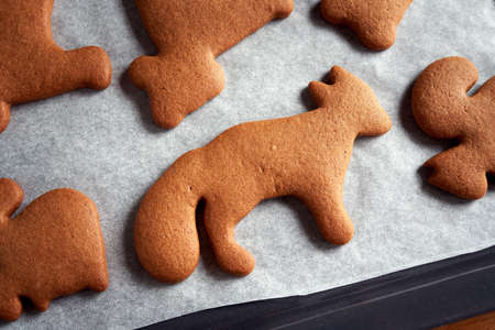 Homemade gingerbread Christmas cookies on a baking sheet, close up Archivio Fotografico