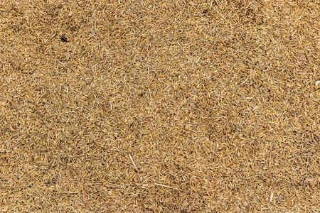 chaff: Rice chaff background
