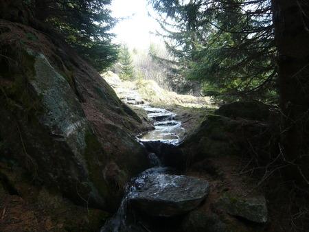 source d eau: source d'eau de montagne au printemps