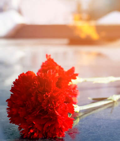 Carnations and Eternal flame in memory of the fallen soldiers of the Second World War. Symbol of victory in World War II. Standard-Bild