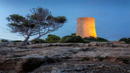 Cala Pi Watchtower and lone tree during blue hour, Mallorca, Spain.