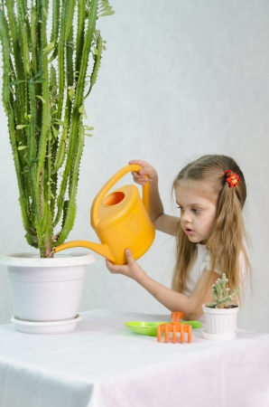 Girl pours from a watering can cacti photo