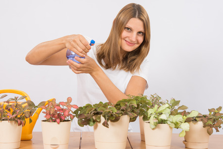europeans: Young girl Europeans care and watering potted plants Fitton Stock Photo