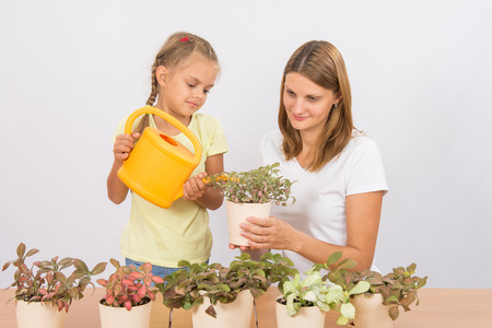 six years: Mother and daughter six years of caring and watering potted plants