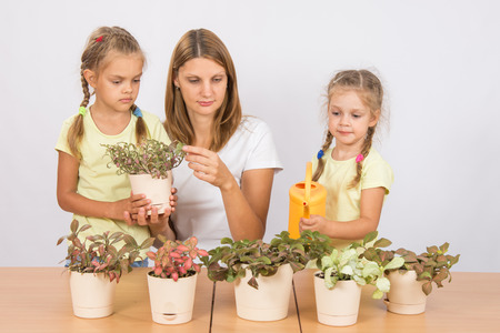 watered: Mother and two daughters, four and six years of caring and watering potted plants