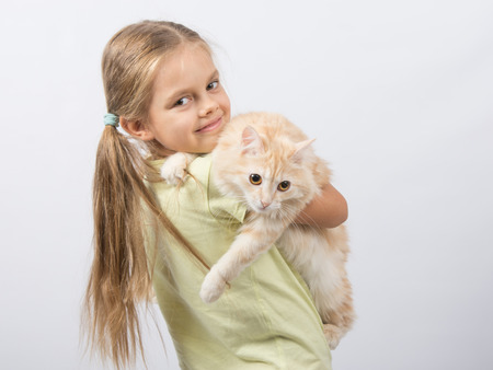 six girl: Six year old girl is holding adult domestic cat