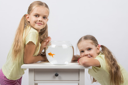 4 5 year old: Two happy girls four and six years are at the table on which stands a fishbowl with goldfish