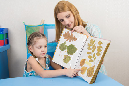 one sheet: Five-year girl and mother examining herbarium shows on one sheet of an album