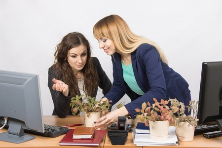 intrusive: One office employee puts on a workstation other employee of your flowers