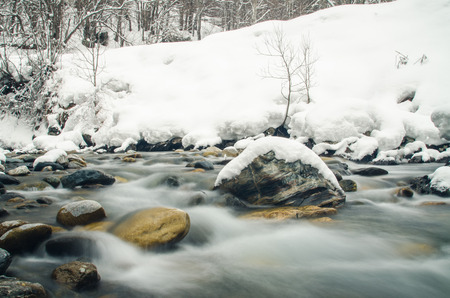 rapidly: Rapidly flowing mountain river on a background of snow-covered forest, blurred by a slow shutter speed