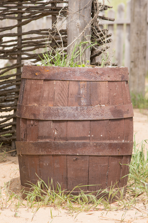 adapted: Old wooden barrel adapted as a bed for flowers Stock Photo