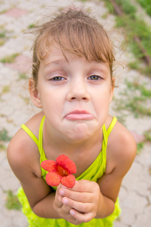 begs: Funny girl with a flower in her hand crouched begging a face looking to the frame